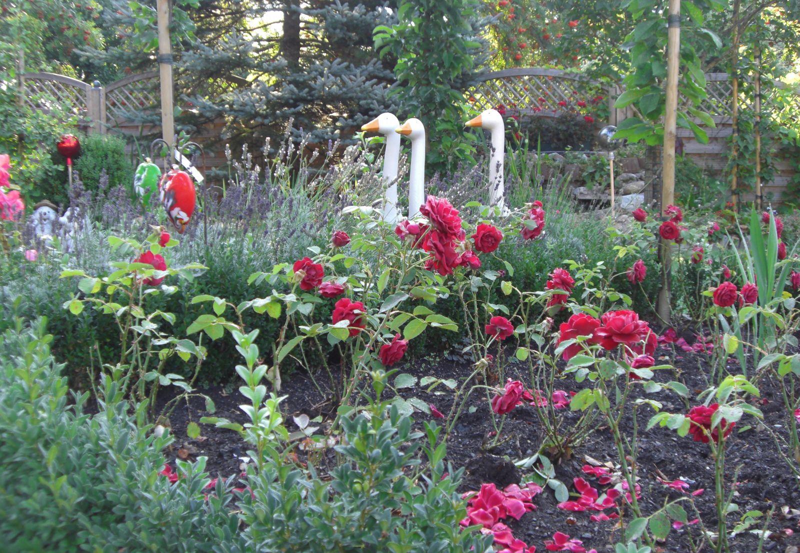 Garten bildergalerie - Schallschutz zum nachbarn im garten ...